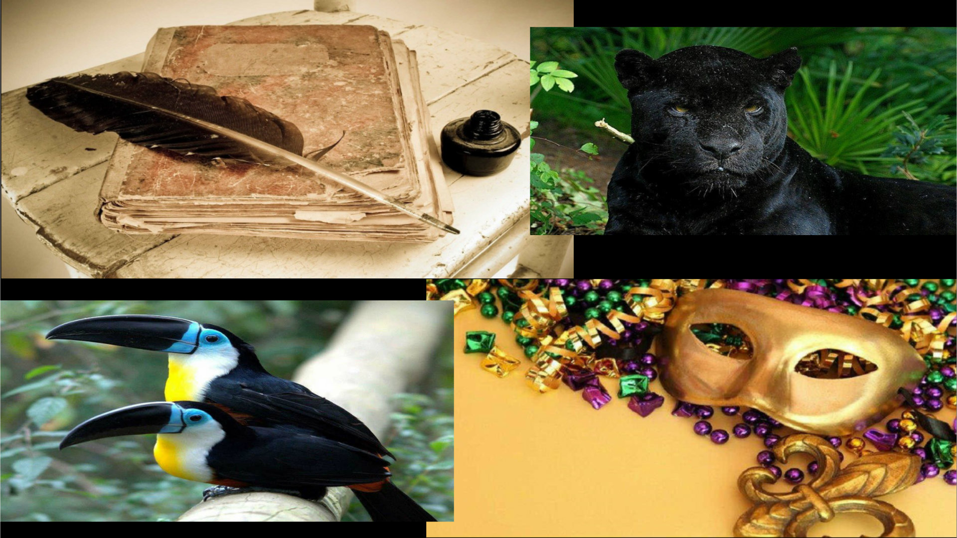 Notariat Guyane Historique Faune Culture